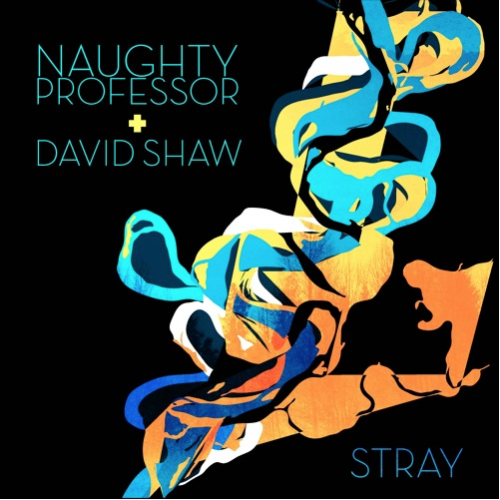 Naughty Professor - Stray